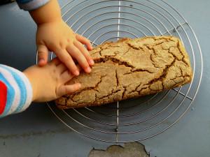gesund und einfach: Buchweizen-Dinkel-Brot, selbst backen